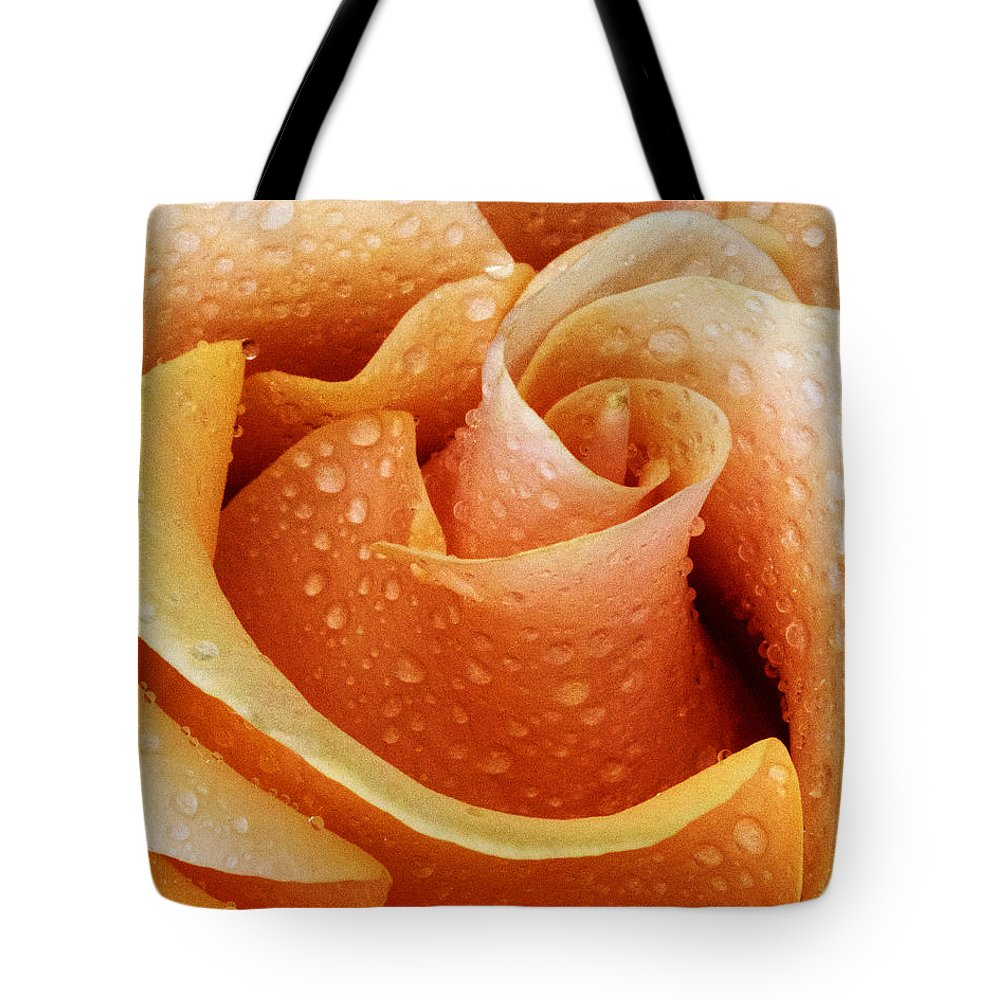 Rose Tote Bag featuring the photograph Gemini Dew by Guy Shultz