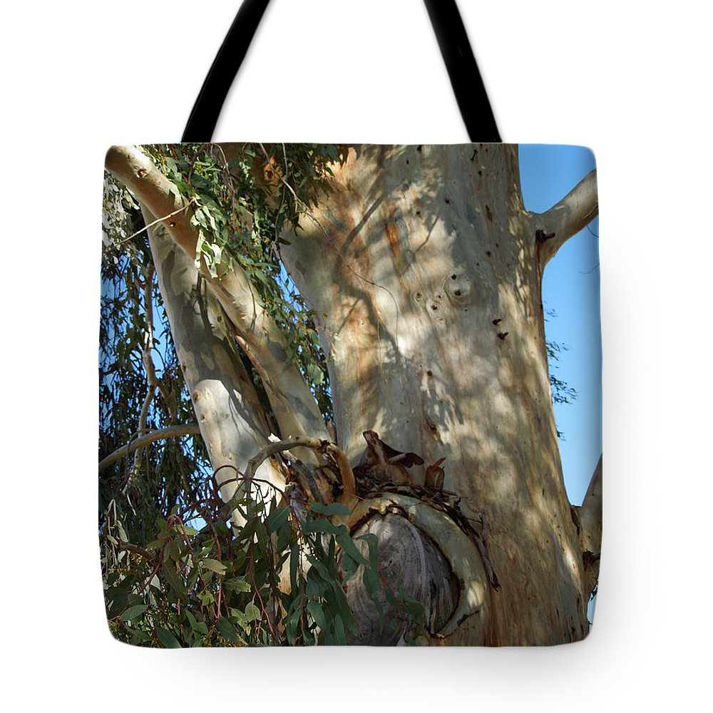 Colette Tote Bag featuring the photograph Gentle Calypso Three In Cantoria Village Spain by Colette V Hera Guggenheim