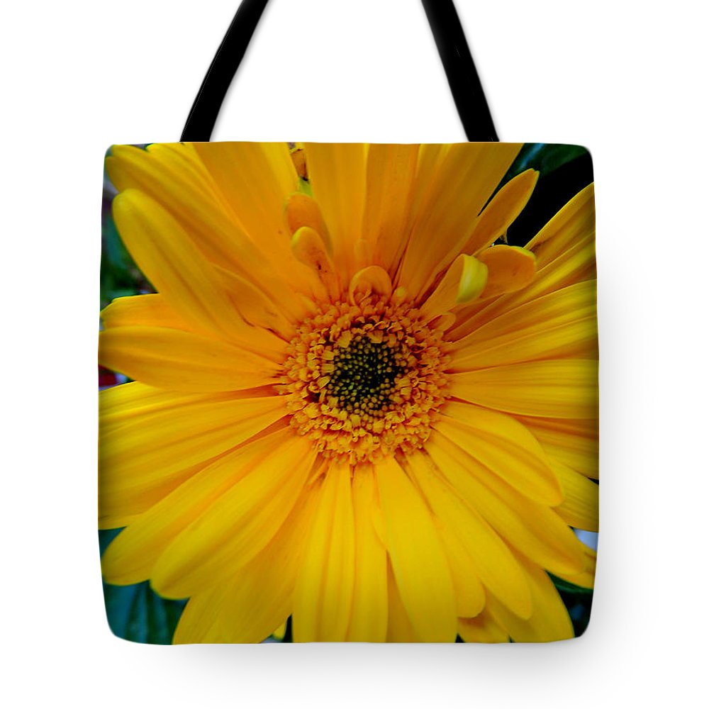 Flowers Tote Bag featuring the photograph Gerber Daisy by Nancy Wagener
