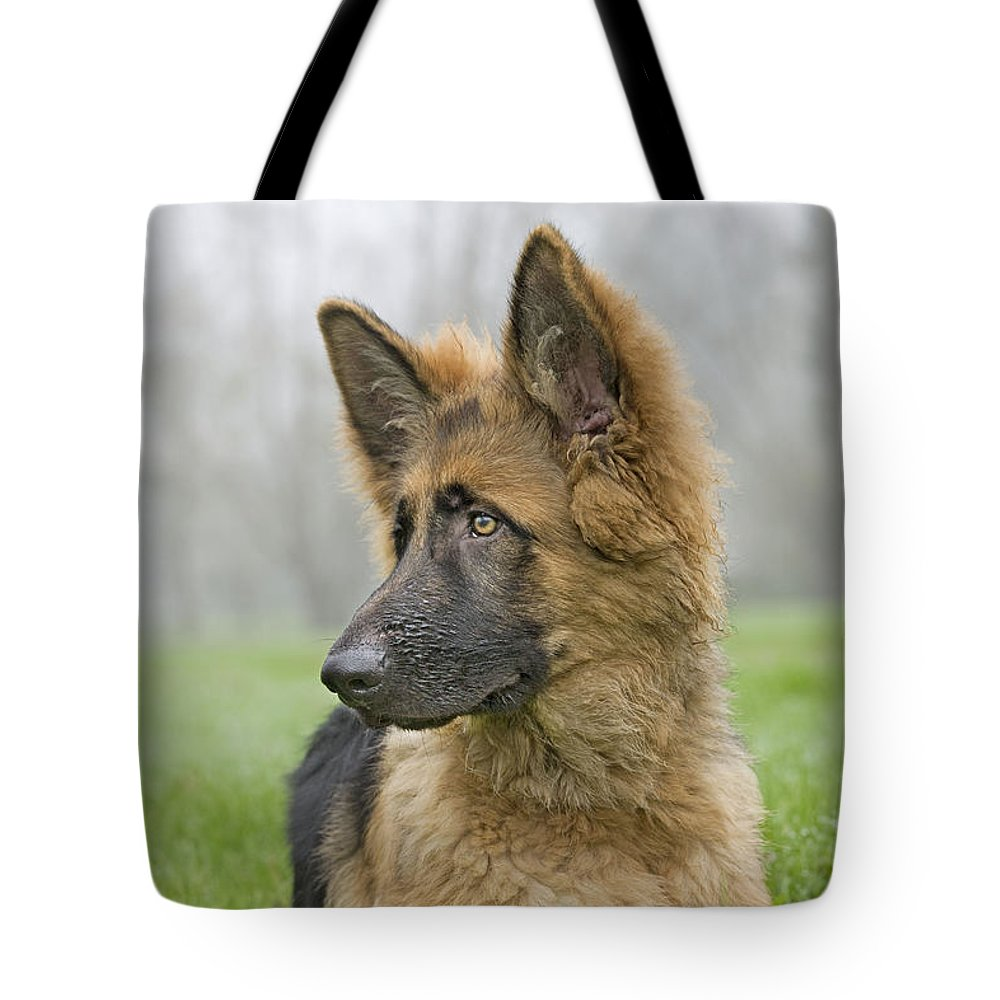 German Shepherd Tote Bag featuring the photograph German Shepherd Puppy by Johan De Meester
