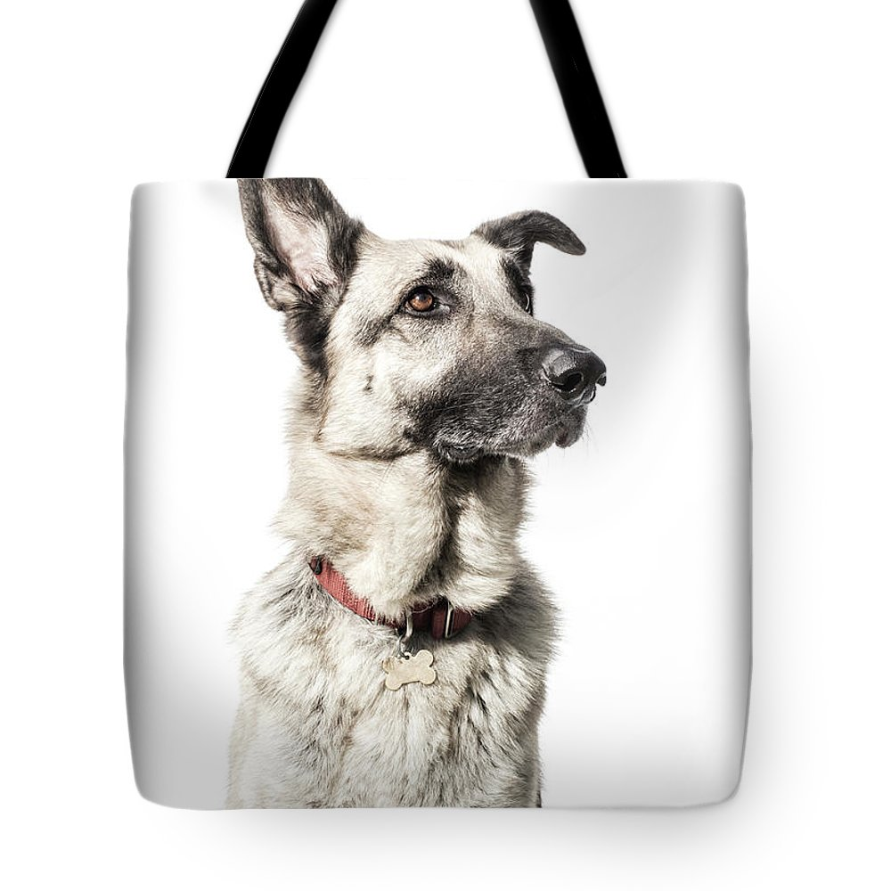 Pets Tote Bag featuring the photograph German Shepherd - The Amanda Collection by Amandafoundation.org