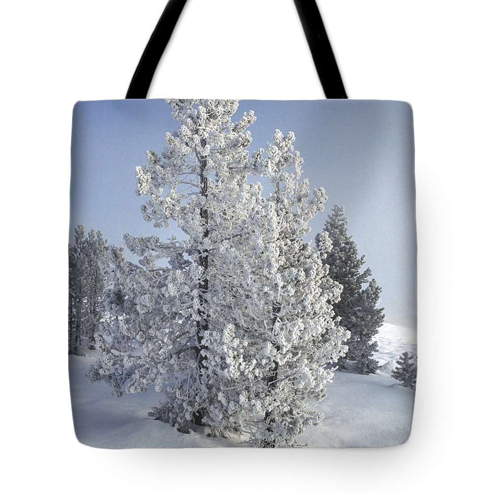 Yellowstone Tote Bag featuring the photograph Ghost Trees Of Yellowstone by Sandra Bronstein