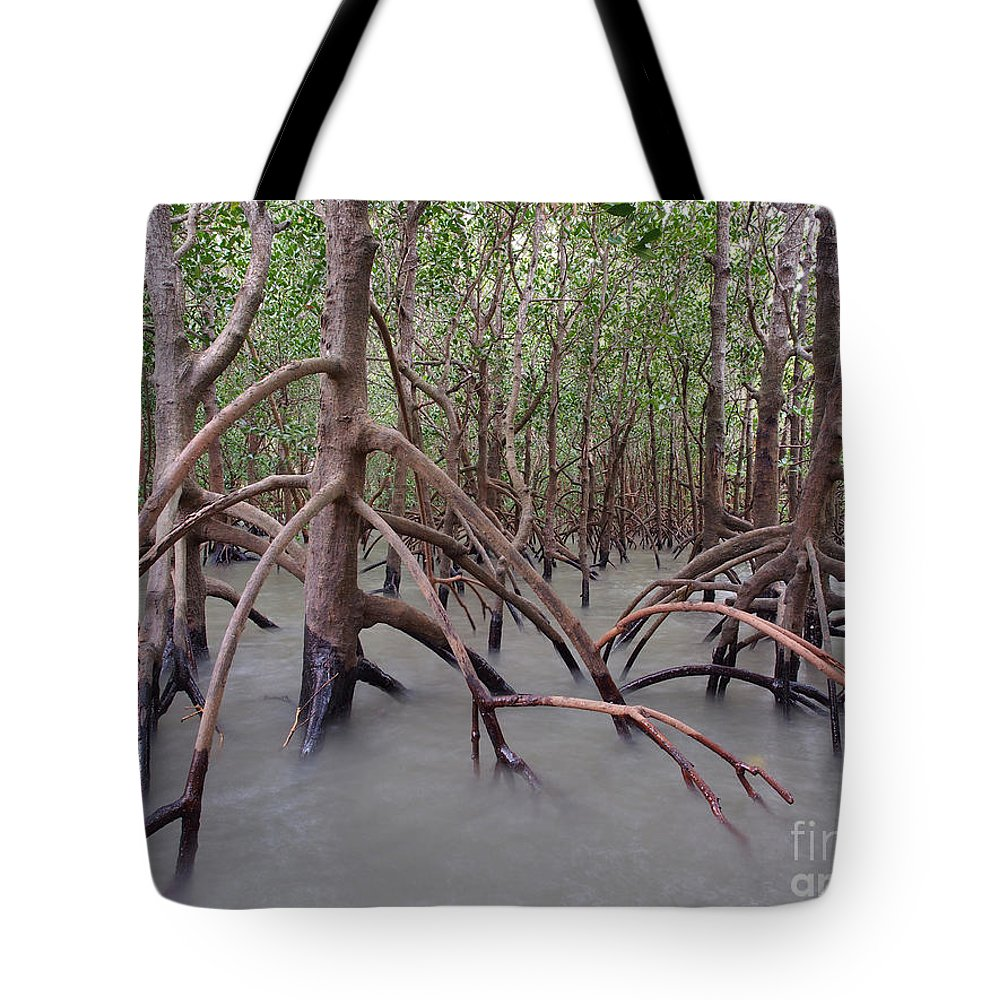 Australia Tote Bag featuring the photograph Ghostly Mangroves by Focus Far and Wide