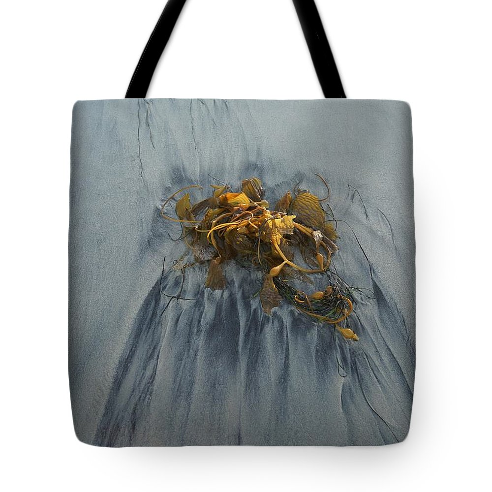 Kelp Tote Bag featuring the photograph Giant Kelp On The Beach by Kerri Mortenson