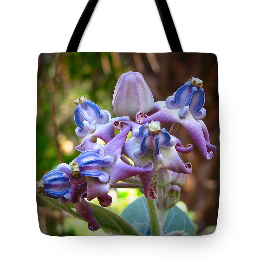 Phil Tote Bag featuring the photograph Giant Milkweed by Phil Penne