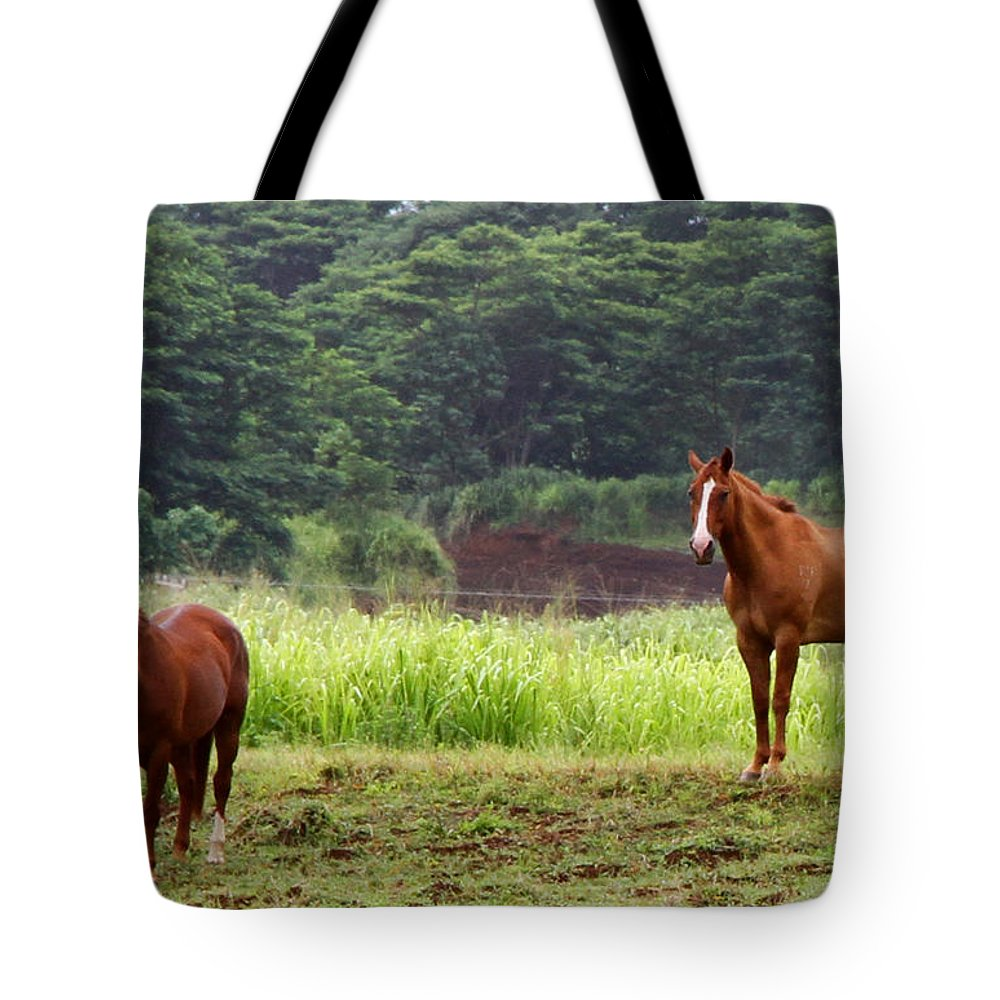 Horse Tote Bag featuring the photograph Giddy Up Horsy By Diana Sainz by Diana Raquel Sainz