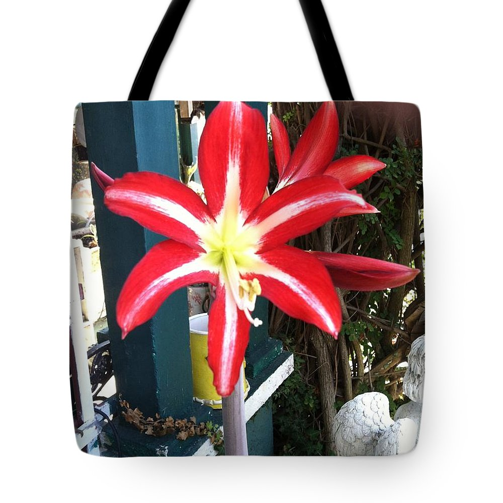Red/white Flower Tote Bag featuring the pyrography Gift From Mother Earth by Judy Gerstner