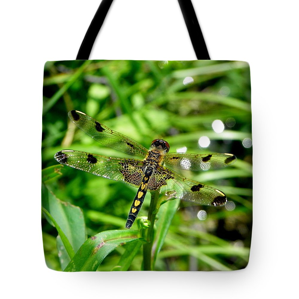 Insects Tote Bag featuring the photograph Gifts From Muck Bog 2 by Georgia Hamlin