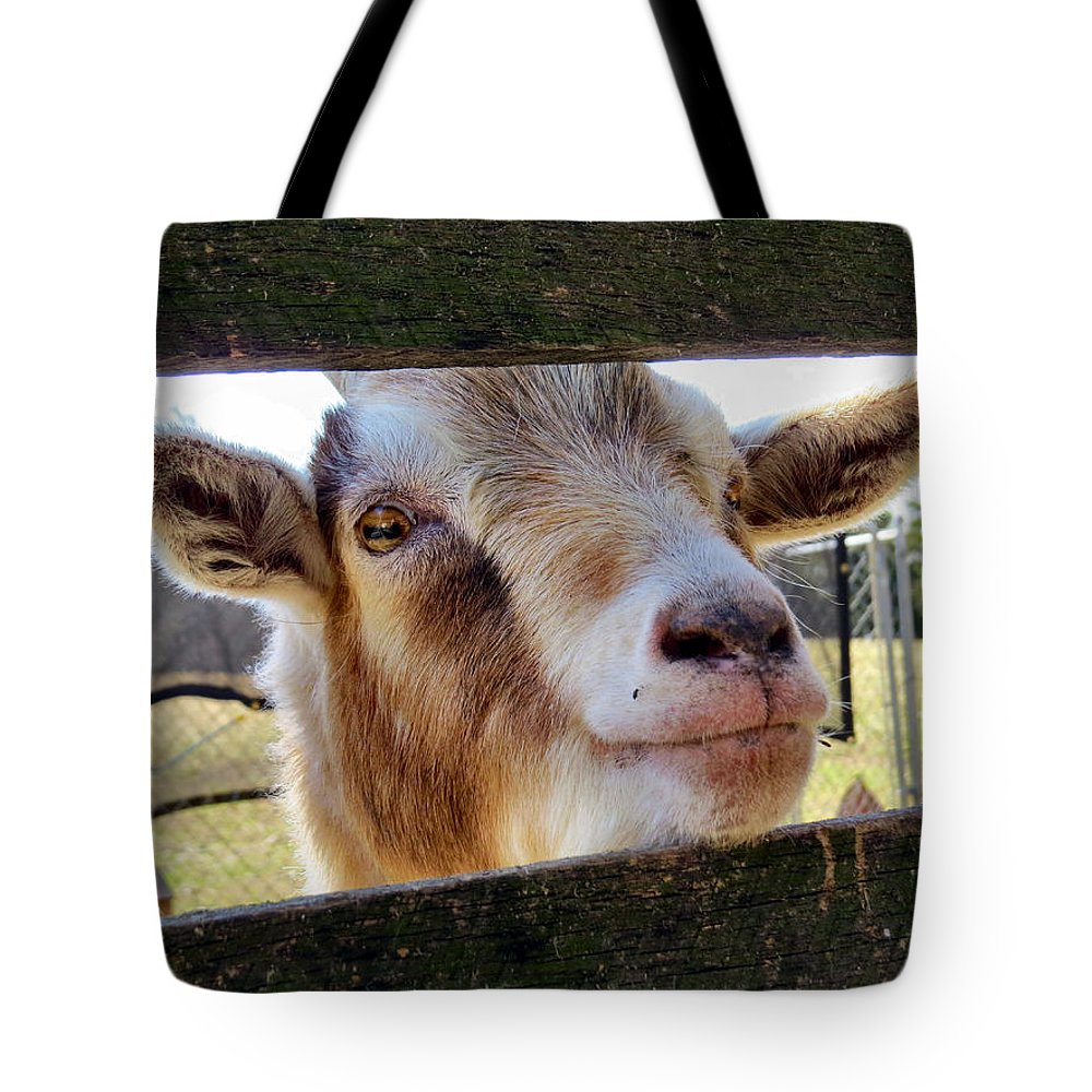 Farm Tote Bag featuring the photograph Gimme A Kiss by Art Dingo