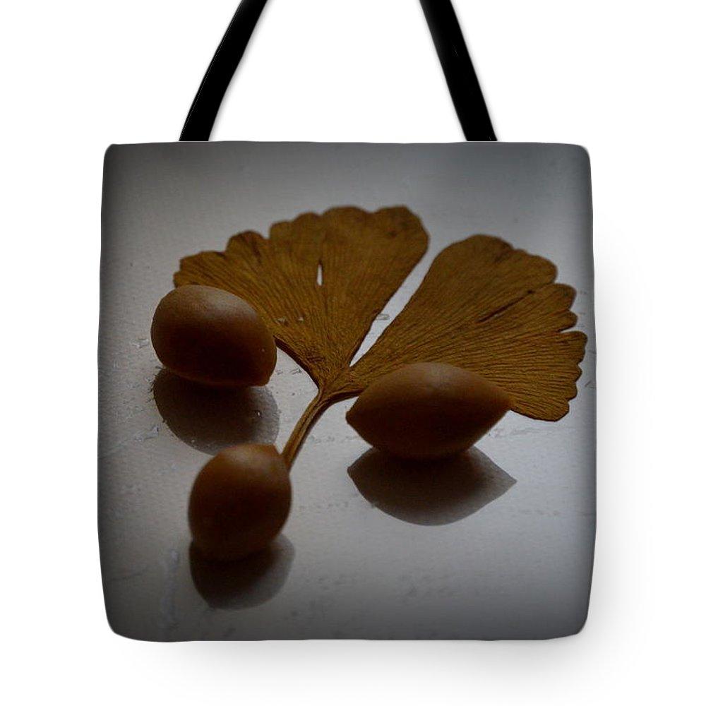 Gingko Biloba Tote Bag featuring the photograph Gingko 2 by Riad Belhimer