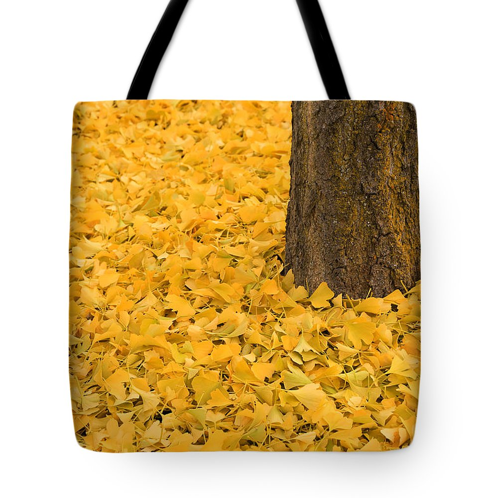 Ginkgo Bliss Tote Bag featuring the photograph Ginkgo Bliss 2 by Rachel Cohen