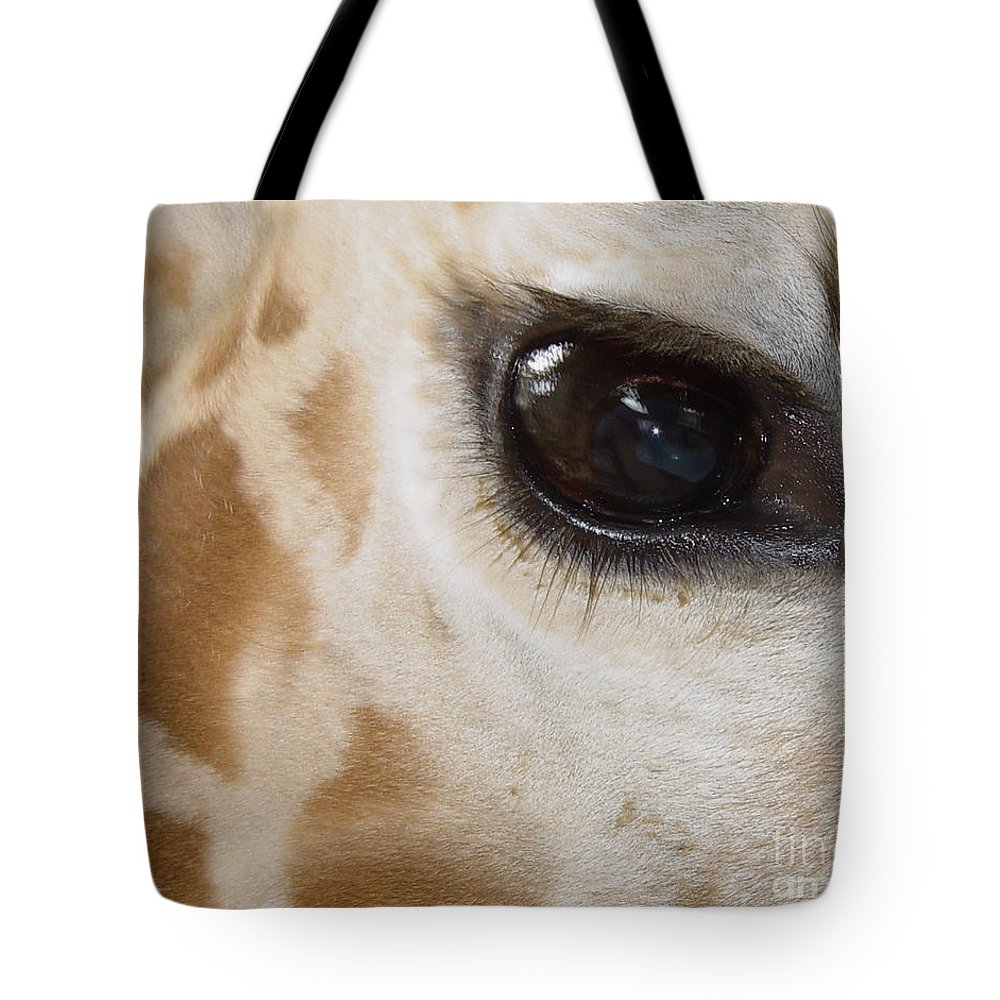 Giraffe Tote Bag featuring the photograph Giraffe Eye by Heather Coen