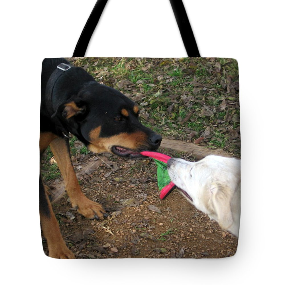 Dog Tote Bag featuring the photograph Give It To Me by Amy Hosp