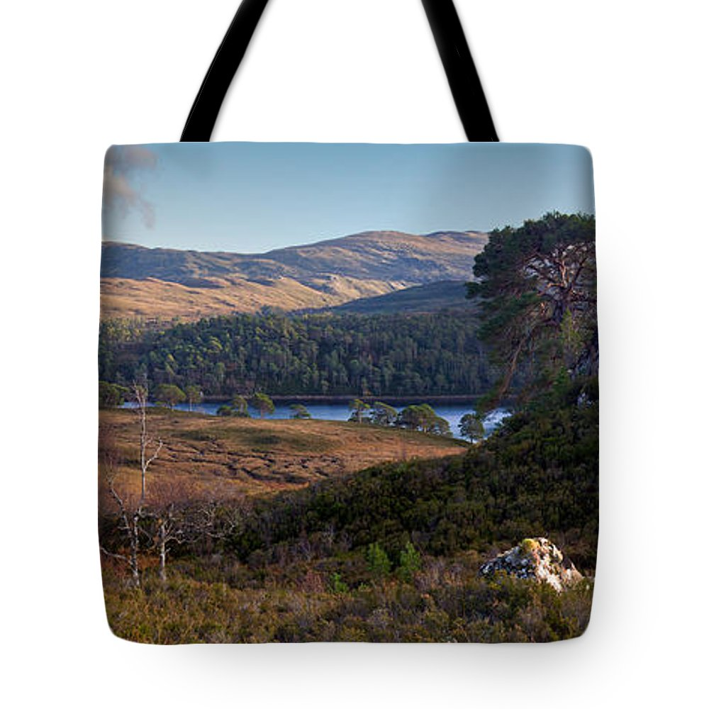 Caledonian Forest Tote Bag featuring the photograph Glen Affric Panorama II by Gary Eason