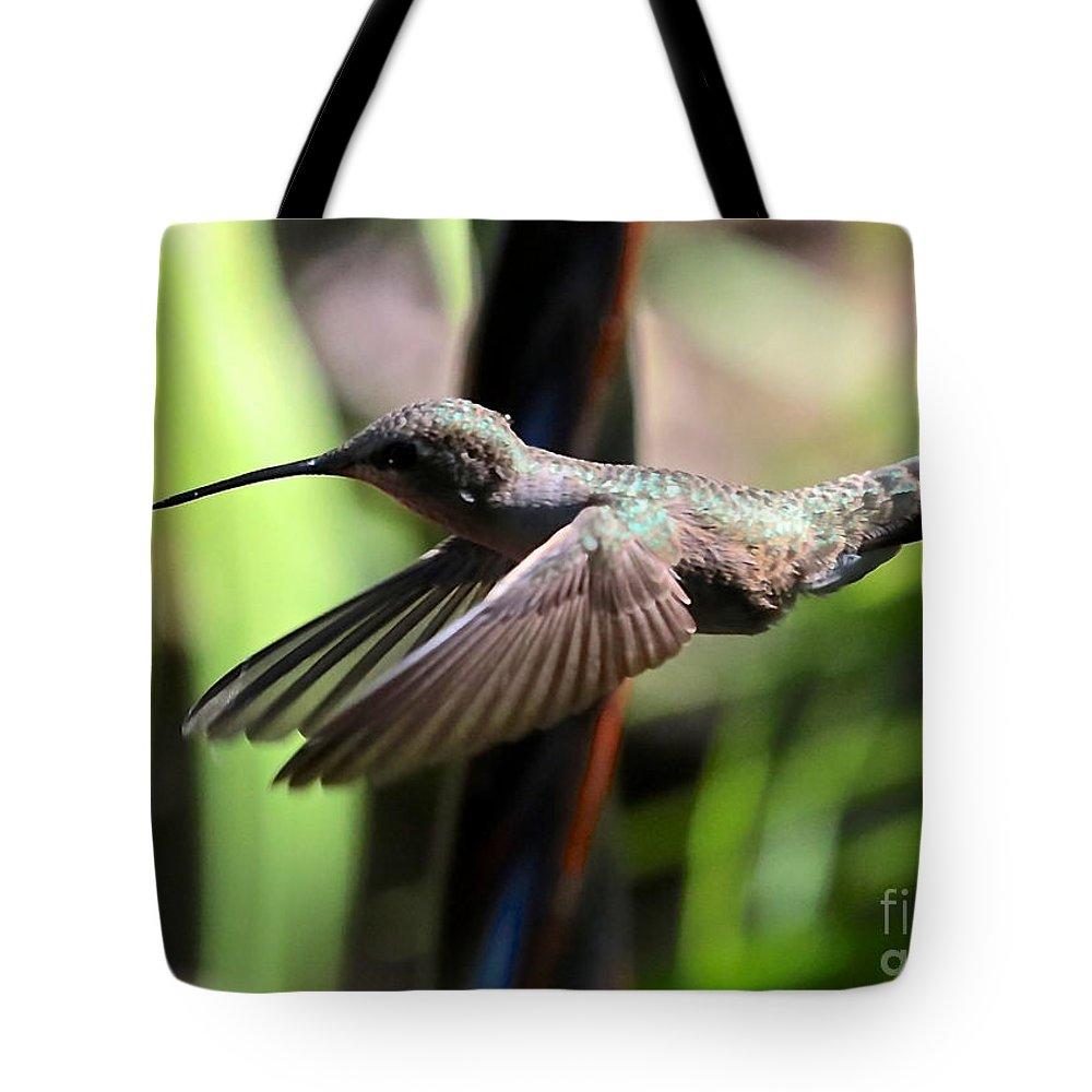 Hummingbird Tote Bag featuring the photograph Gliding Hummingbird by Carol Groenen