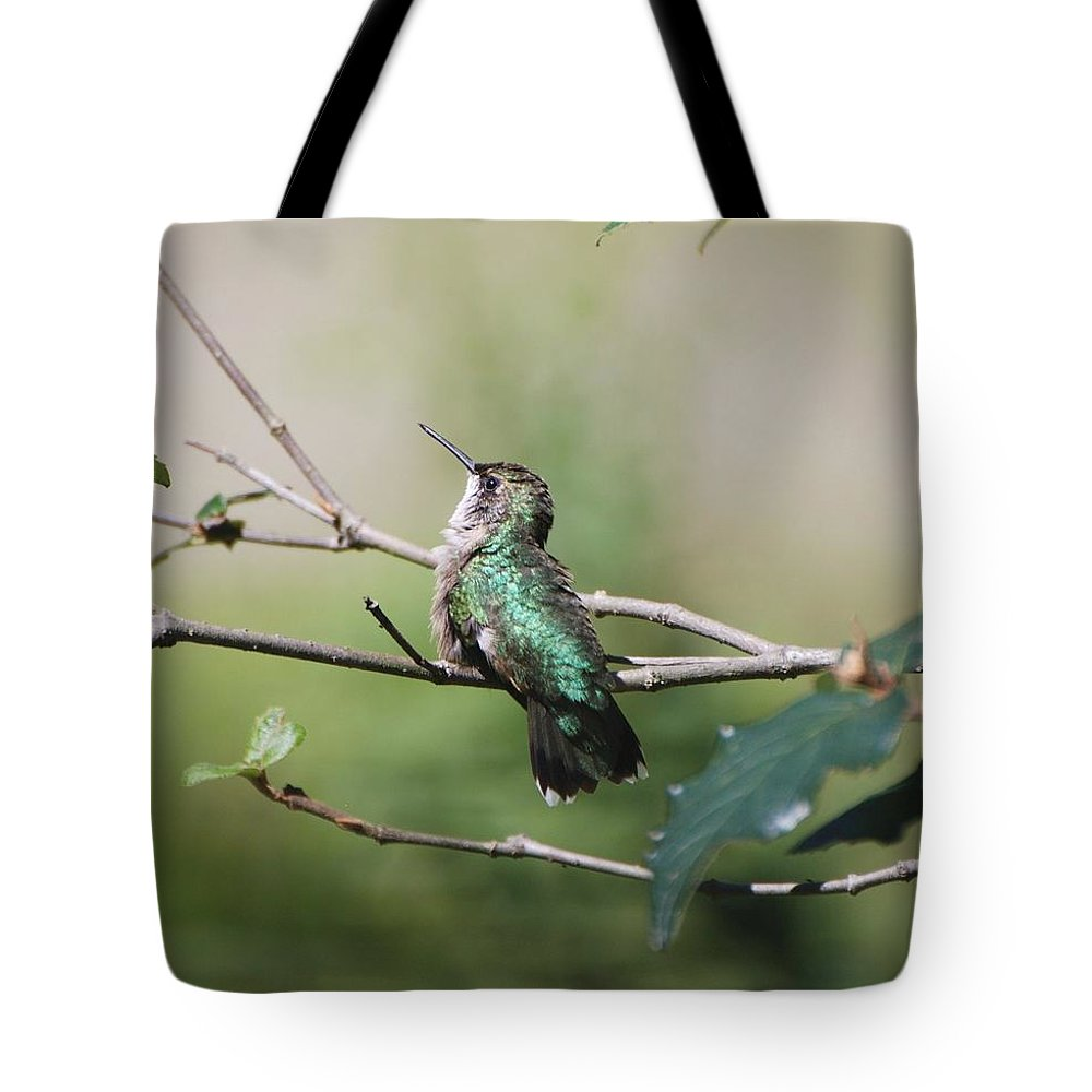 Hummingbird Tote Bag featuring the photograph Glistening Hummer by Amy Porter