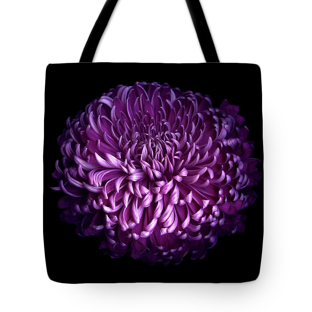 Chrysanthemum Tote Bag featuring the photograph Glorious Autumn Purple Chrysanthemum by Photograph By Magda Indigo