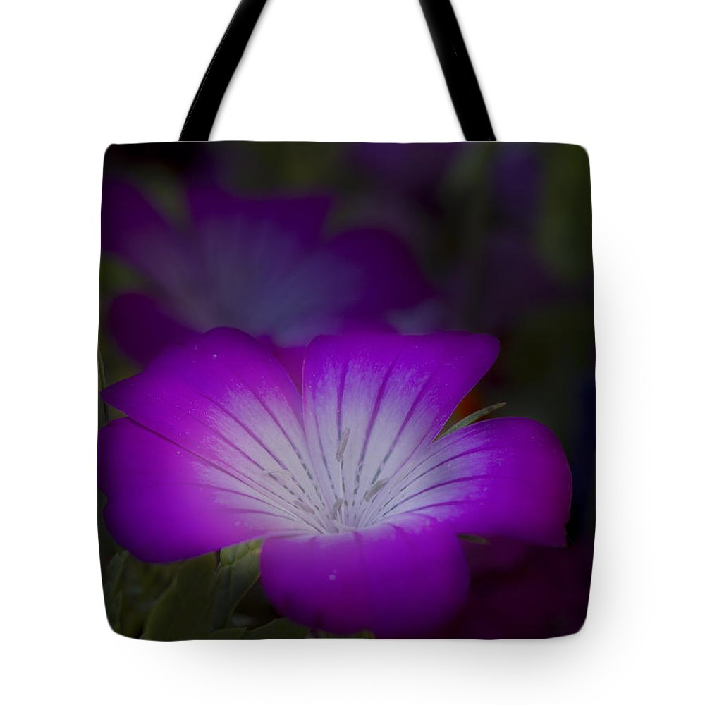 Flower Tote Bag featuring the photograph Glow by Robert Woodward