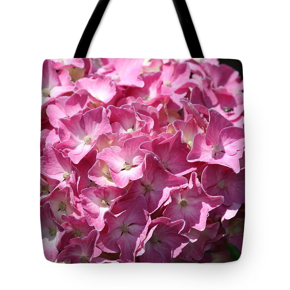 Hydrangea Tote Bag featuring the photograph Glowing Pink Hydrangea by Christiane Schulze Art And Photography