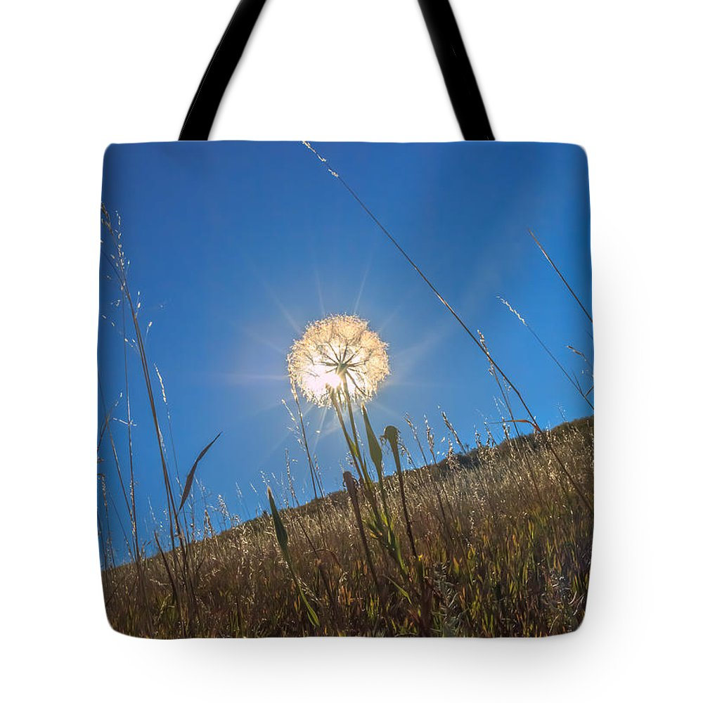 Gigimarie Tote Bag featuring the photograph Glowing Summer by Gina Herbert