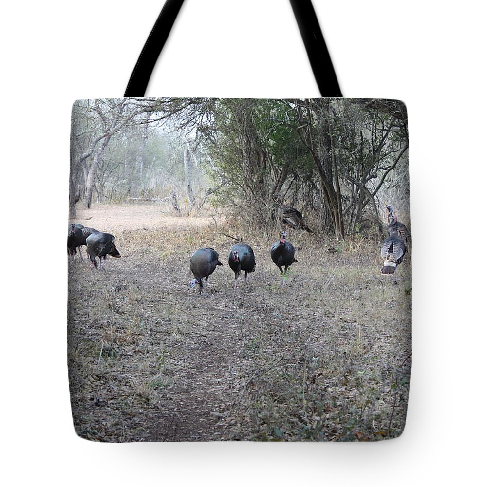 Bird Tote Bag featuring the photograph Gobblers by Jeff Tuten