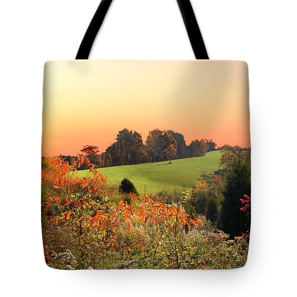 Wild Flowers Tote Bag featuring the photograph God's Glory by Randall Branham