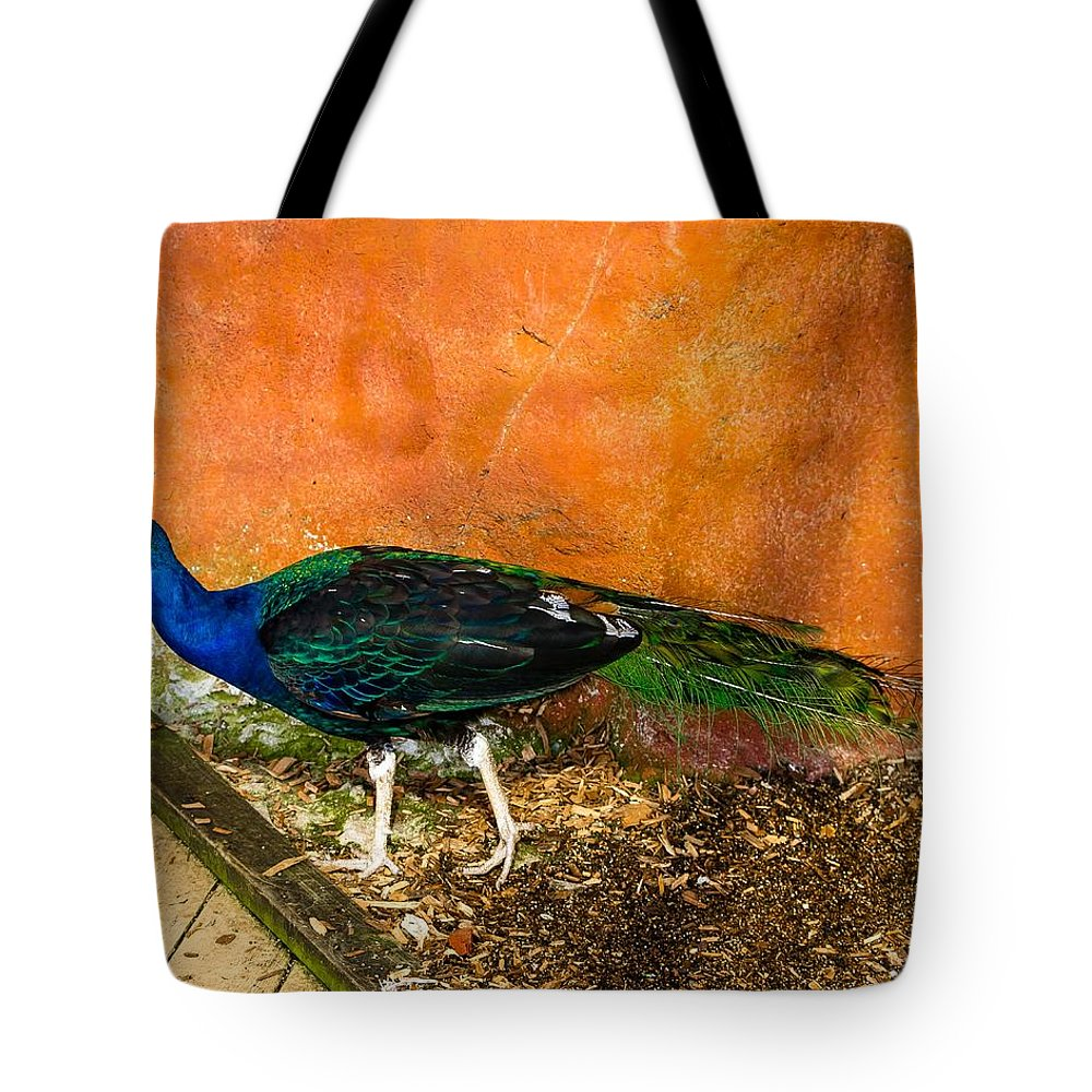 Peacock Tote Bag featuring the photograph Going For A Walk by Robert L Jackson