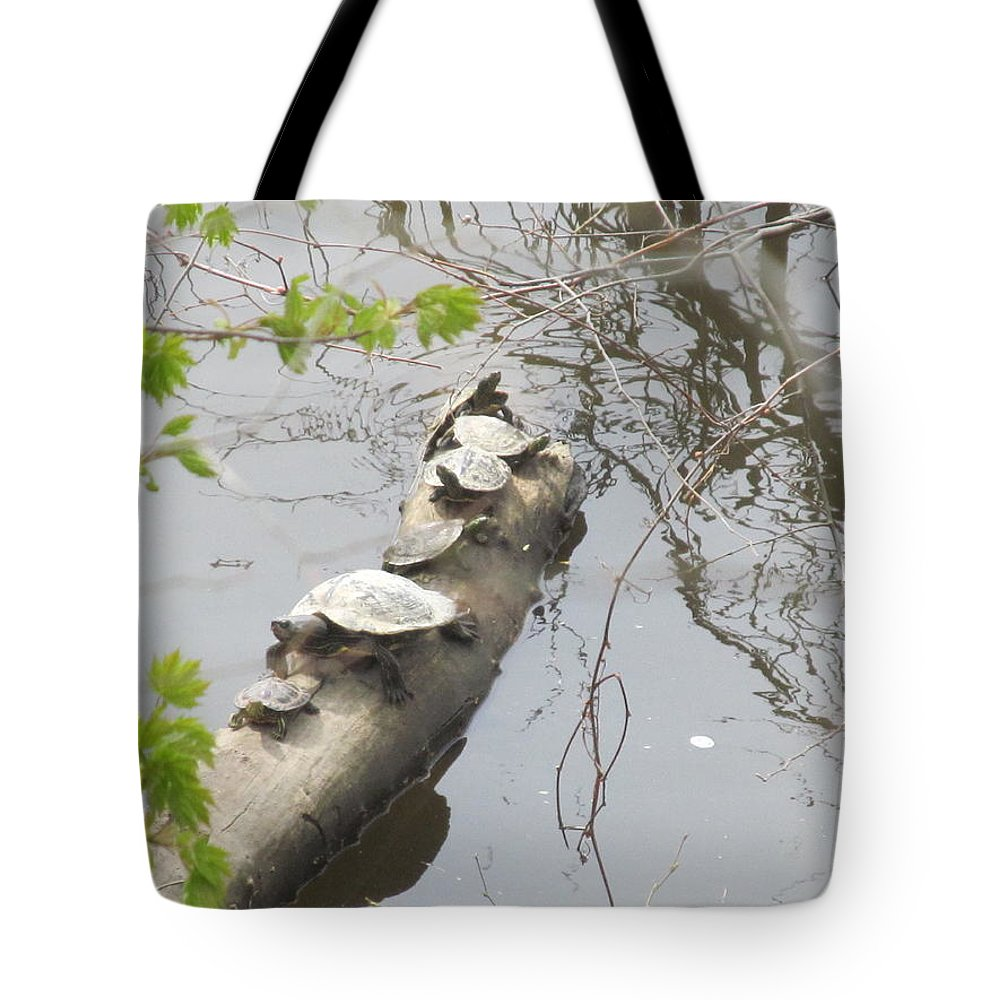 Turtle Tote Bag featuring the photograph Going This Way by Tina M Wenger