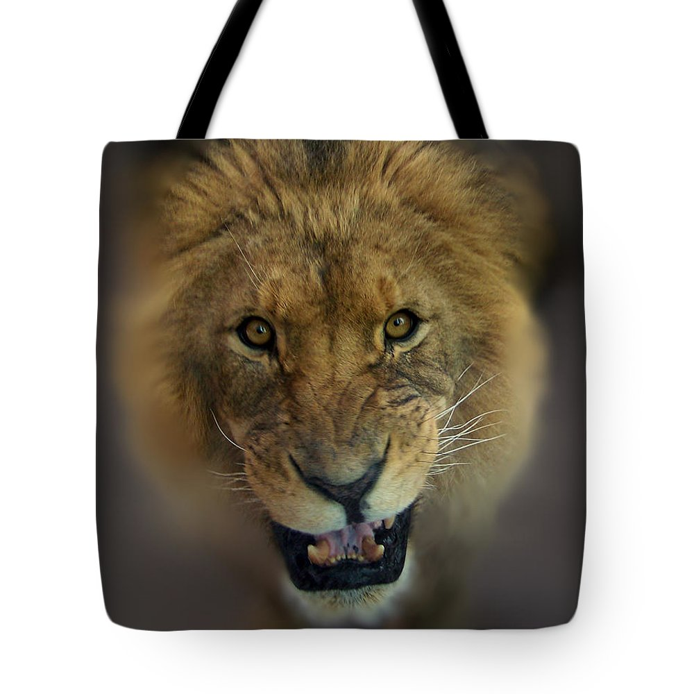 Animals Tote Bag featuring the photograph Going To Get You by Ernie Echols