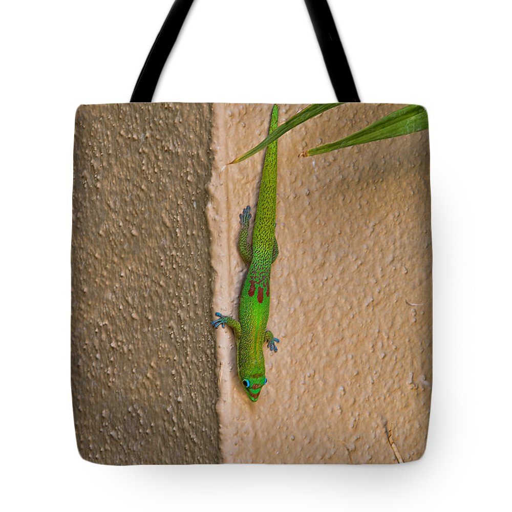 2013 Tote Bag featuring the photograph Gold Dust Day Gecko by Leon Roland