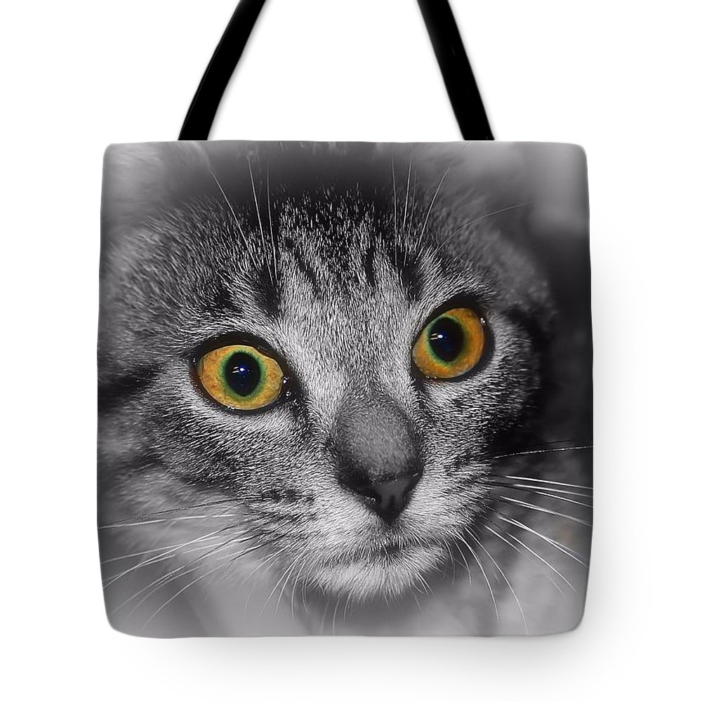 Gold Eyes Tote Bag featuring the photograph Gold Eyes by Joyce Baldassarre