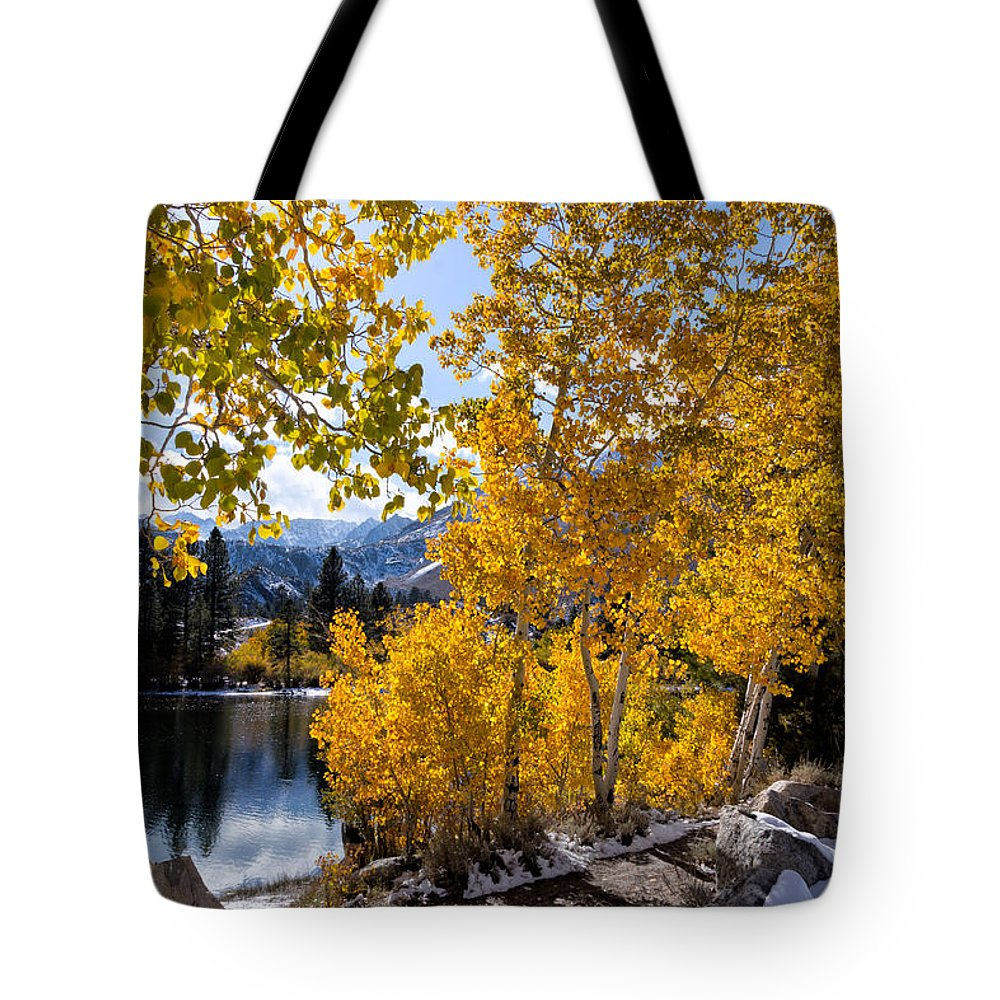 Sierra Nevada Tote Bag featuring the photograph Golden Aspen On The Lake by Kathleen Bishop