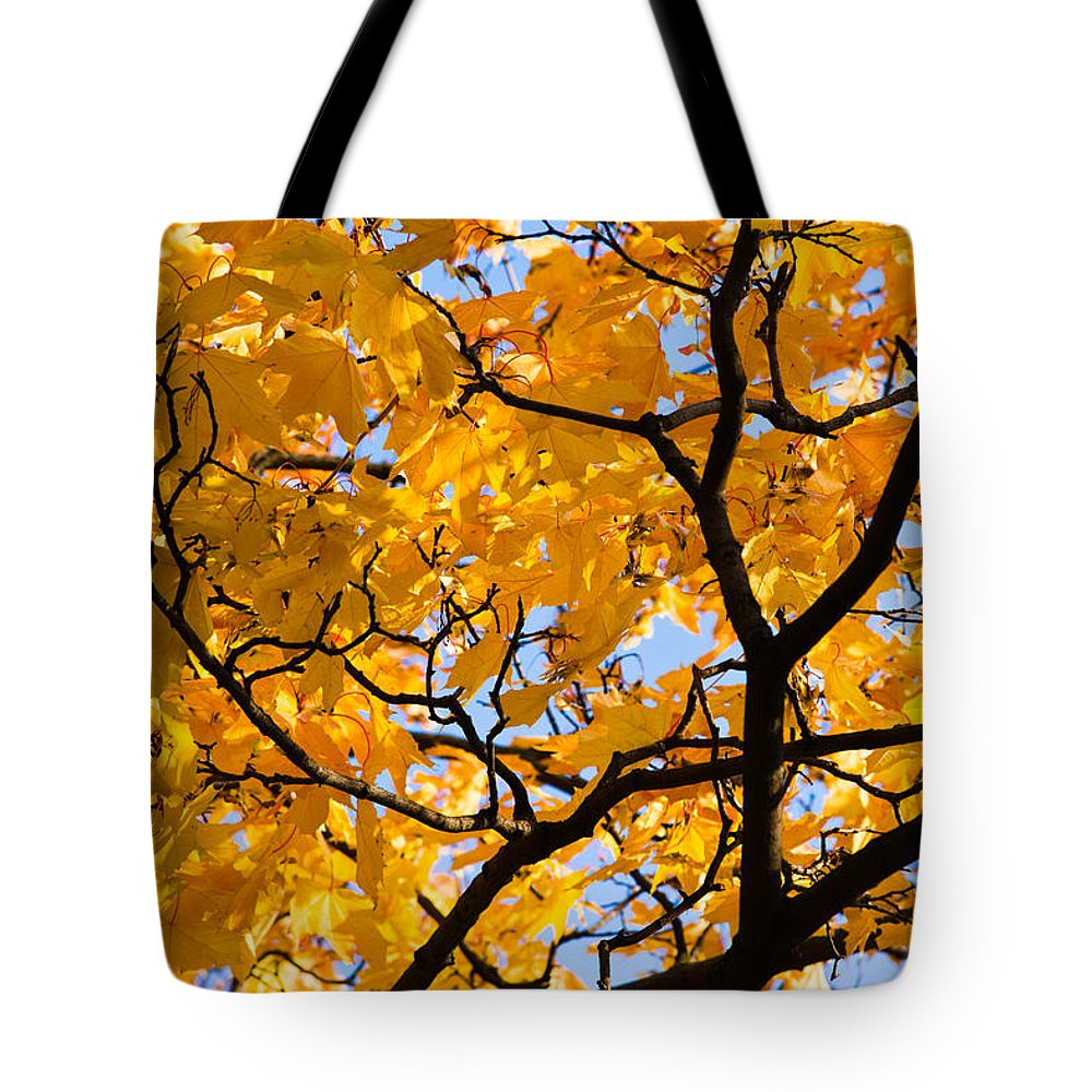 Abstract Tote Bag featuring the photograph Golden Autumn - Featured 3 by Alexander Senin