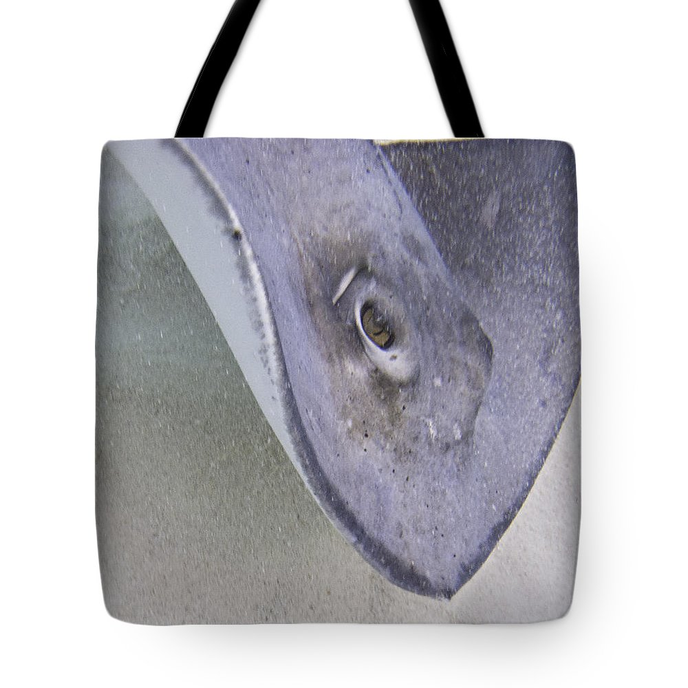 Ocean Tote Bag featuring the photograph Golden Eye by Terry Melius