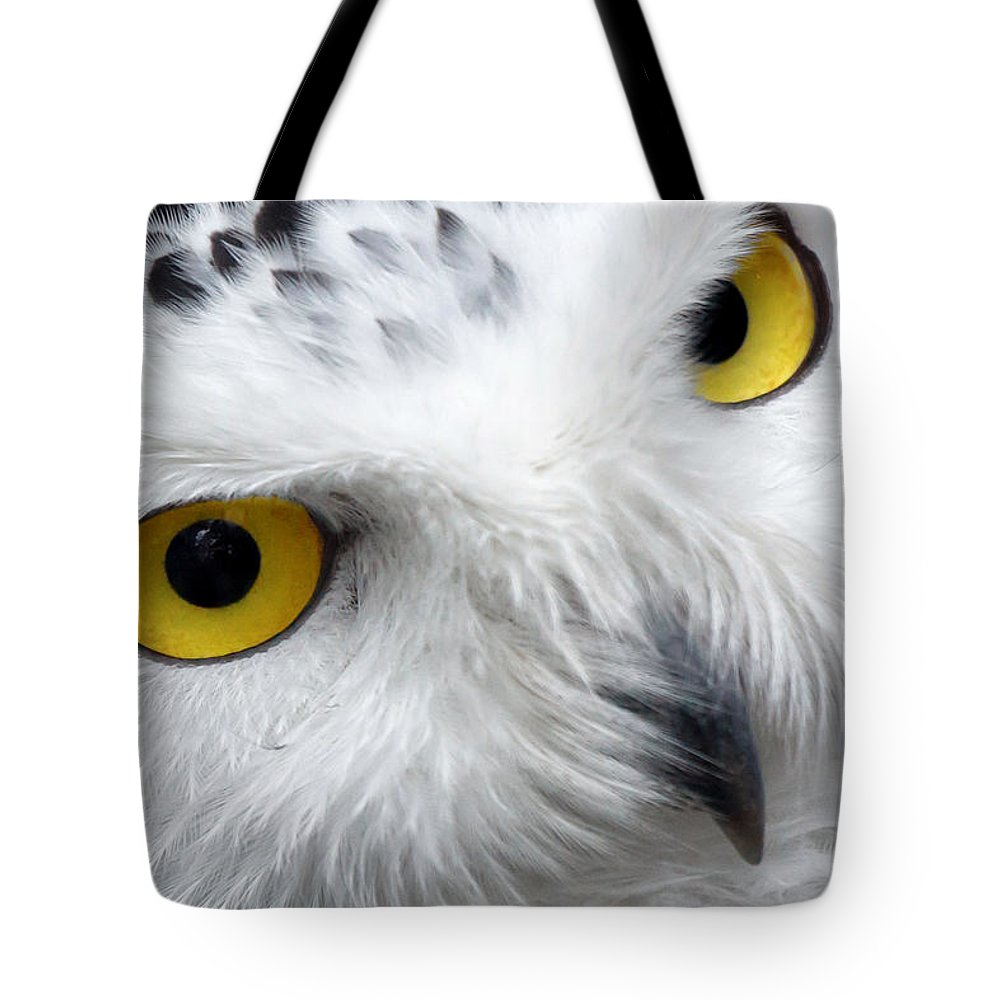 Owl Tote Bag featuring the photograph Golden Eyes by Pixabay
