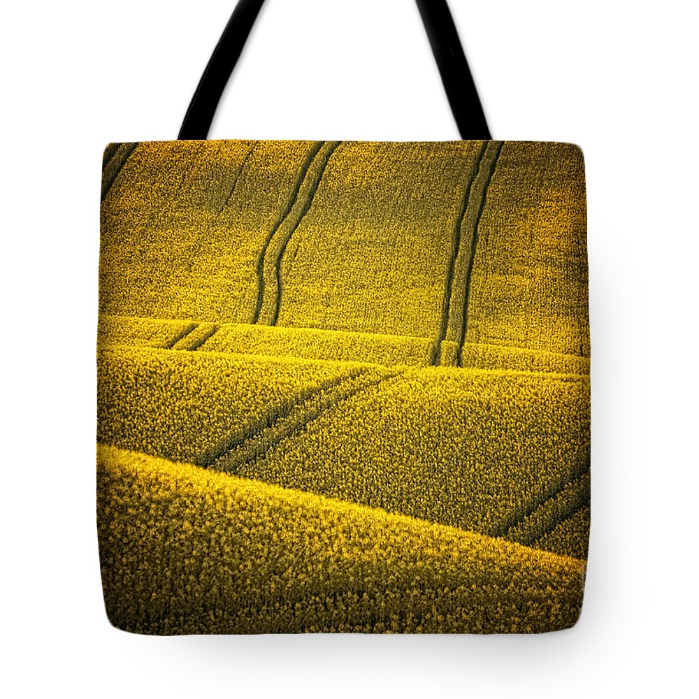 Field Tote Bag featuring the photograph Golden Fields by Jaroslaw Blaminsky