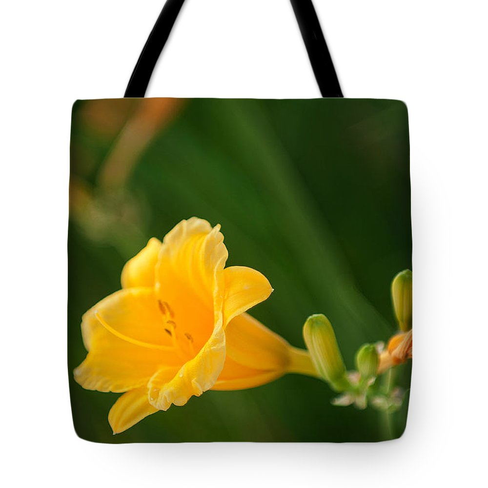 Golden Lilly Tote Bag featuring the photograph Golden Lilly by Paul Mangold