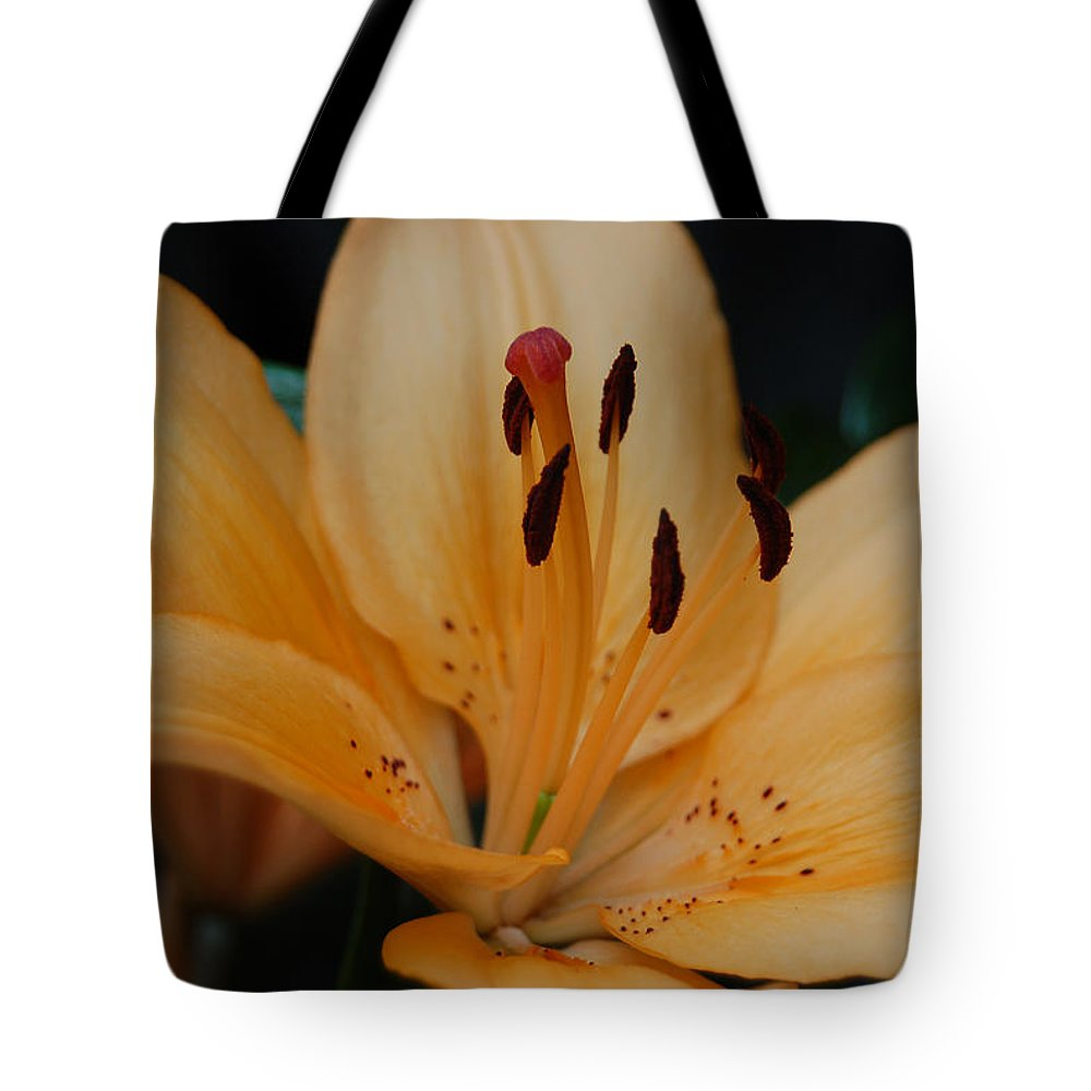 Day Lily Tote Bag featuring the photograph Golden Lily by Suzanne Gaff