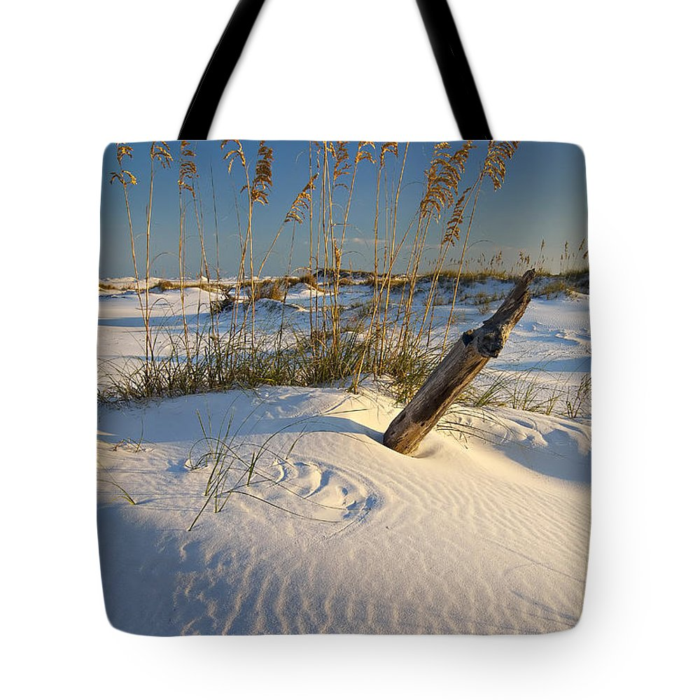 Florida Tote Bag featuring the photograph Golden Sea Oats by Bill Chambers