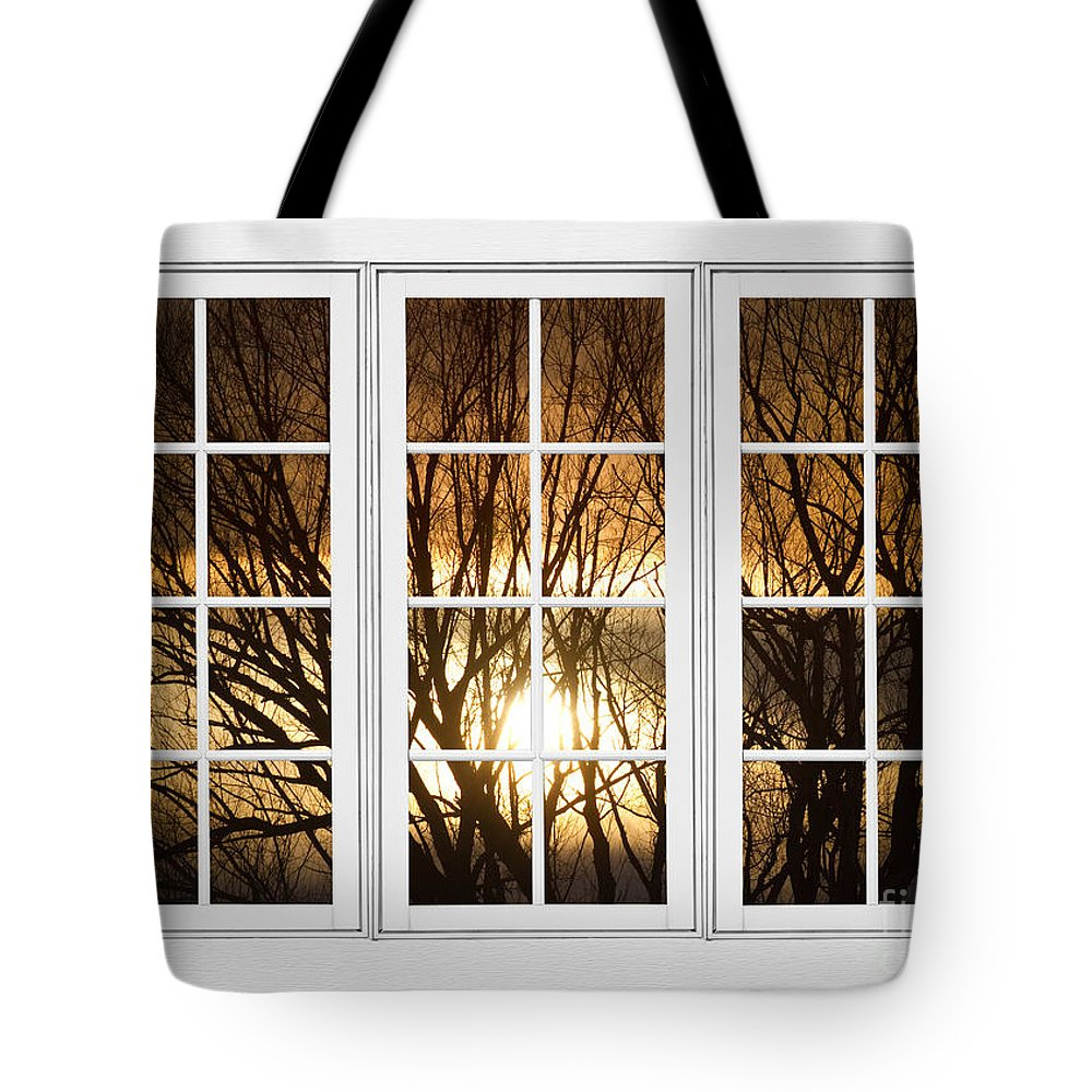 Window Tote Bag featuring the photograph Golden Sun Silhouetted Tree Branches White Window View by James BO Insogna