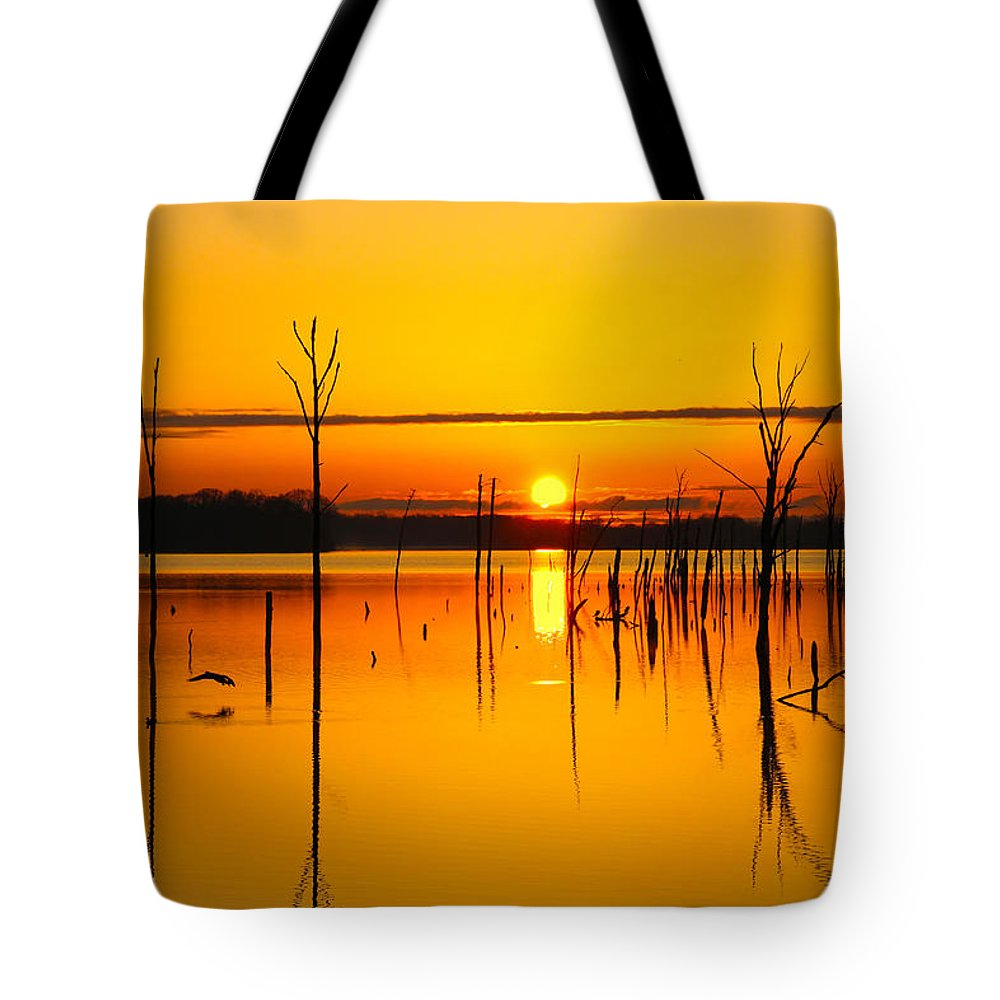 Sunrise Tote Bag featuring the photograph Golden Sunrise Iv by Roger Becker