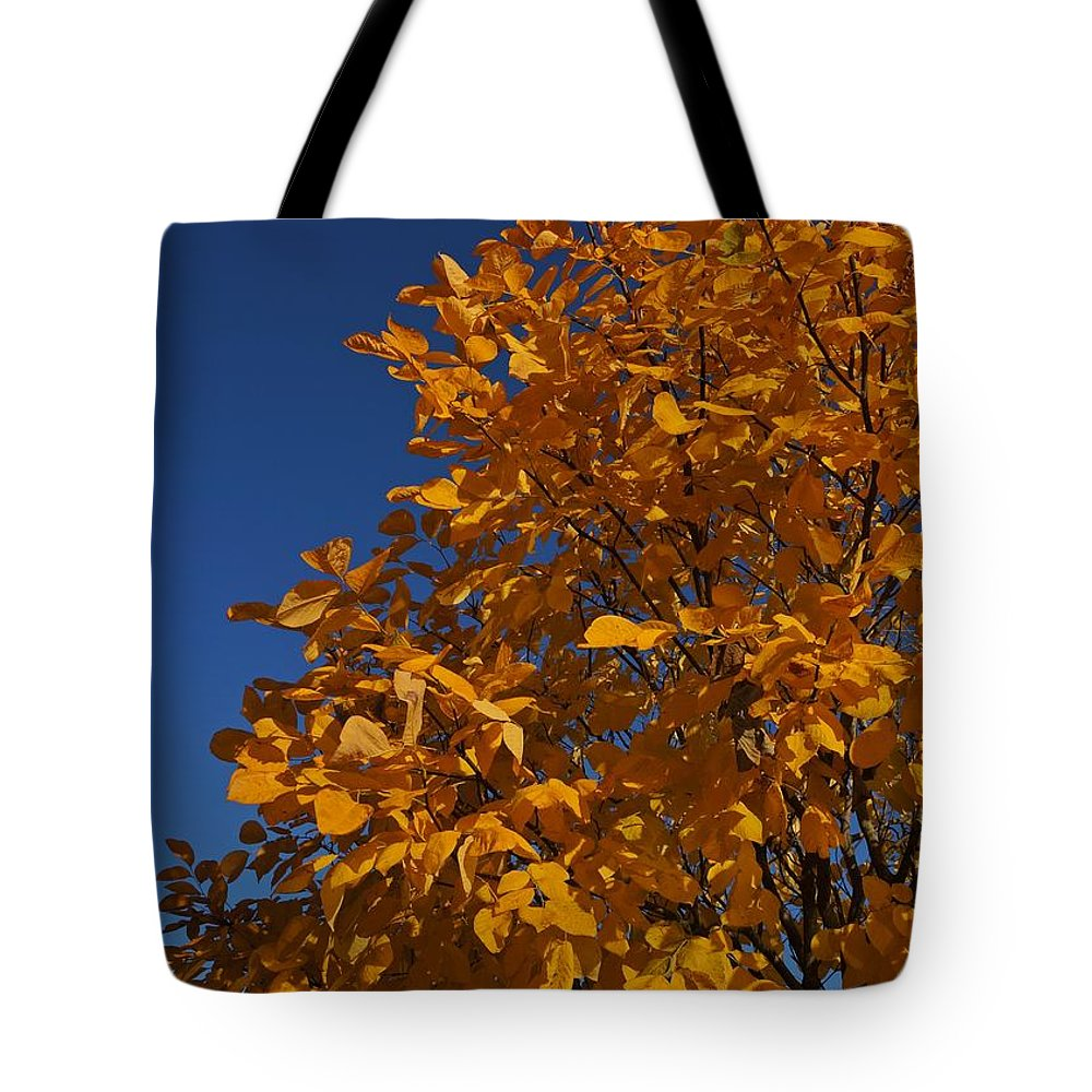 Autumn Tote Bag featuring the photograph Golden Tree by Patricia Strand