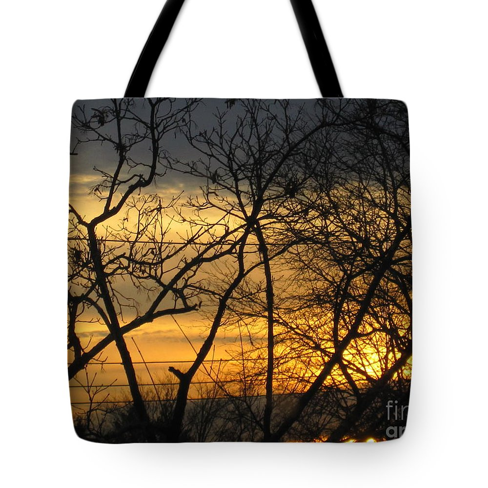 Fire Tote Bag featuring the photograph Golden Twilight 2 by Tara Shalton