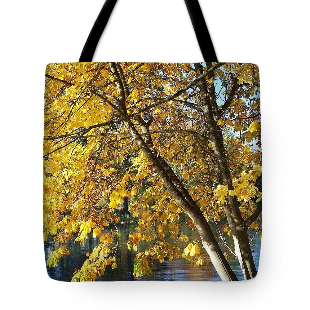 Golden Zen Tote Bag featuring the photograph Golden Zen by Chalet Roome-Rigdon