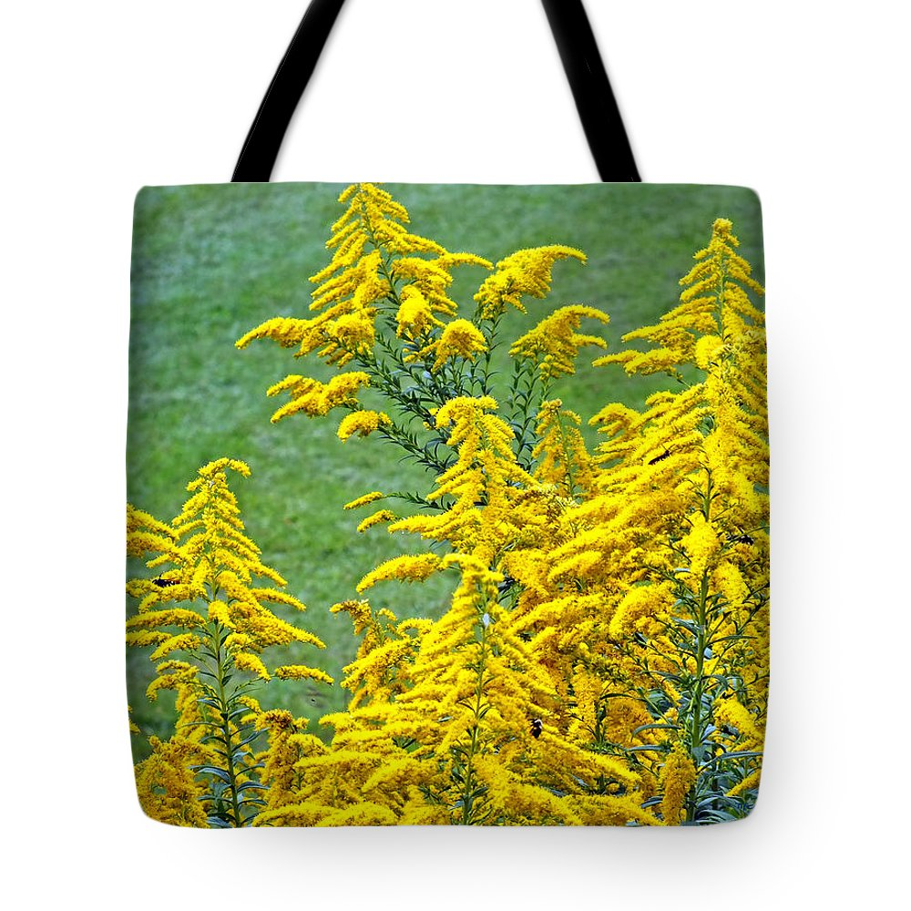 Duane Mccullough Tote Bag featuring the photograph Goldenrod Flowers by Duane McCullough