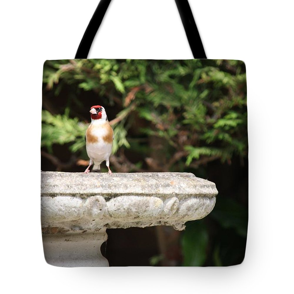 Goldfinch On Birdbath Tote Bag featuring the photograph Goldfinch On Birdbath by Gordon Auld