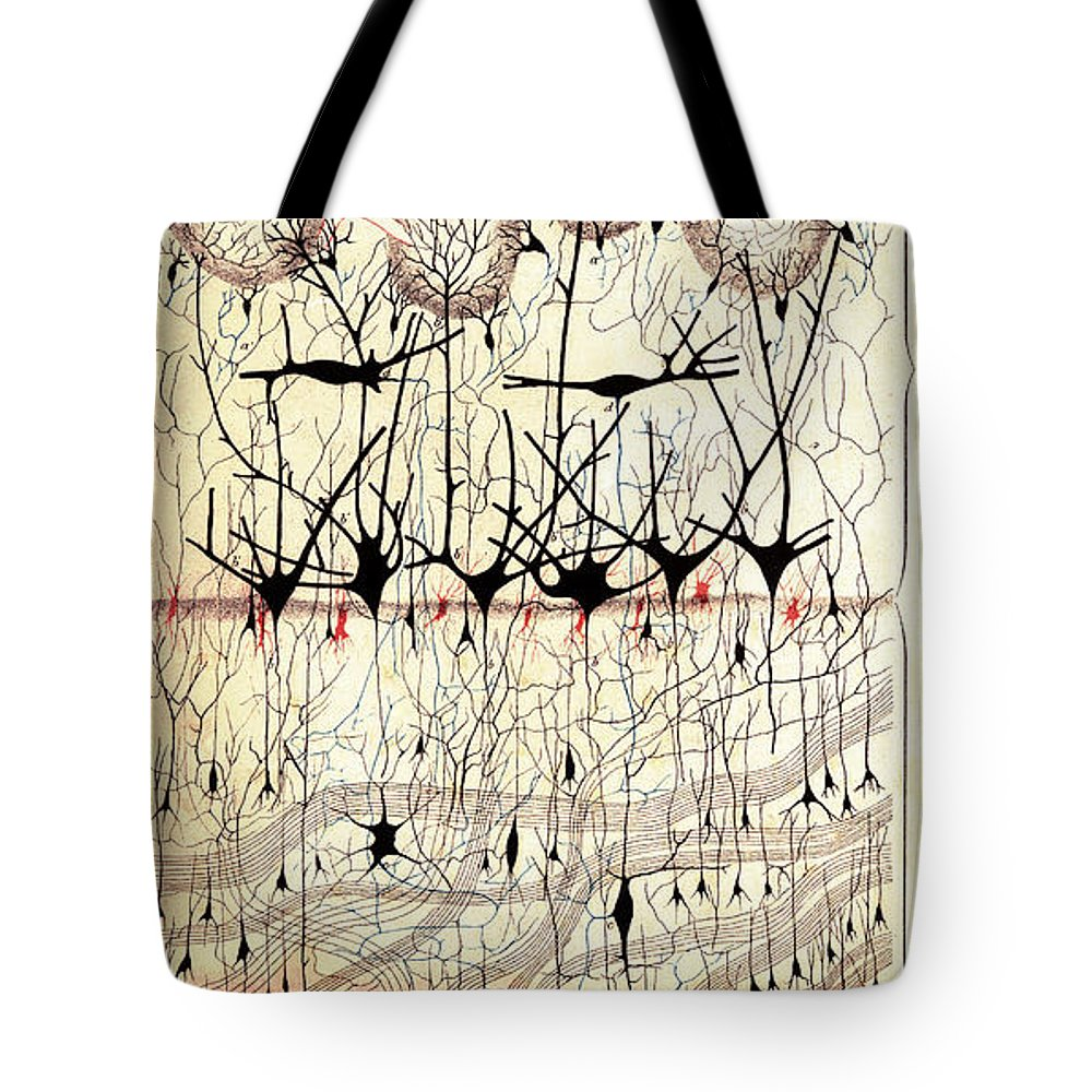 Golgi Photographs Tote Bags