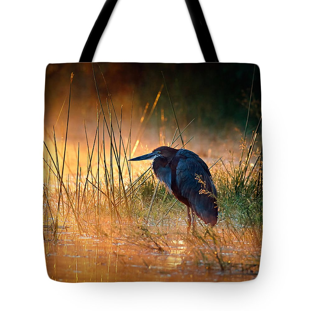 Heron Tote Bag featuring the photograph Goliath Heron With Sunrise Over Misty River by Johan Swanepoel