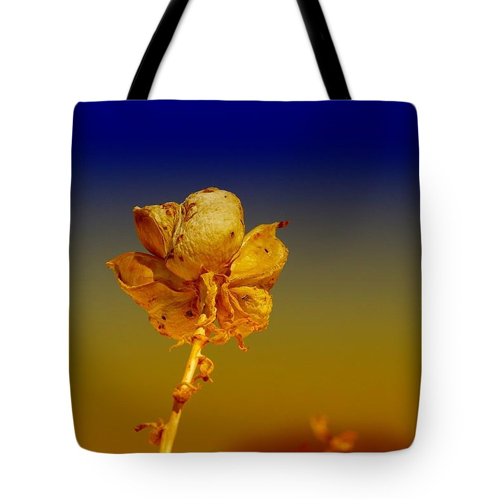 Seed Tote Bag featuring the photograph Gone To Seed by Jeff Swan