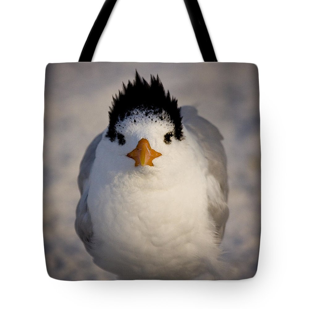 Royal Tote Bag featuring the photograph Good Hair Day by Sandy Swanson
